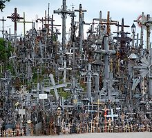 Hill of Crosses, Lithuania by Geoffrey Grinton