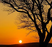 Sunset Silhouette In Derbyshire by Wild-Scorpio