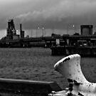 Missed the boat by Ersu Yuceturk
