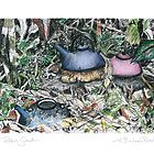 A Potter's Garden (No.4)  by Kerryn Madsen-Pietsch