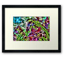 Purple Flowers in New York City, USA Framed Print