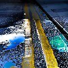 Pavement; or beautiful small things by Noam  Kostucki