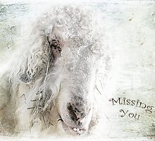 Missing You by Susan Werby