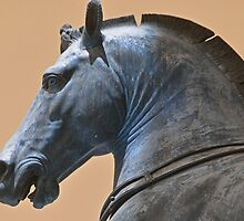 Horse of Saint Mark's Basillica by Michele Conner