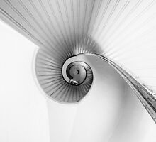 Nautilus by Justin Lowery