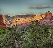 Sedona Beauty by Judi FitzPatrick