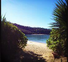 To the Beach! by Niki Smallwood