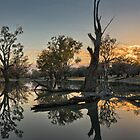 Sunrise - Mount Oxley - Back O Bourke - NSW by Frank Moroni