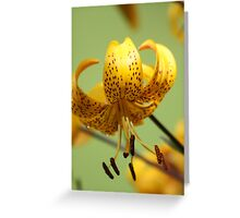 ~The World Laughs in Flowers~ Greeting Card