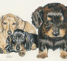 Dachshund Puppies by BarbBarcikKeith