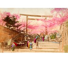 Vintage Japanese Cherry Blossoms Photographic Print