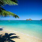 Mokulua Islands at Lanikai Beach by printscapes