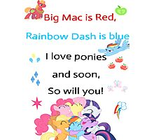 For the love of Ponies Photographic Print
