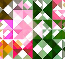 Pink Roses in Anzures 1 Abstract Triangles 1 by Christopher Johnson