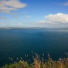 Rathlin Island by Adrian McGlynn