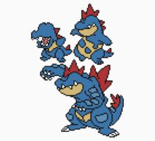 Totodile, Croconaw and Feraligatr Kids Clothes