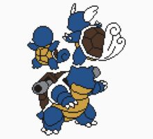 Squirtle, Wartortle and Blastoise Kids Clothes
