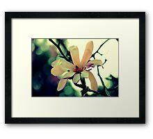 Spring Offering  Framed Print