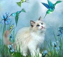 Ragdoll Kitty And Hummingbirds by Carol  Cavalaris