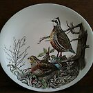 Bird Plate - Still Life  by 082010