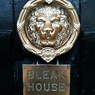 The Bleak House Lion - Still Life by 082010