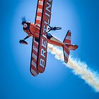 Breitling Wing Walker - March 2013 by James Millward