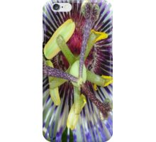 Passion Flower Close Up iPhone Case/Skin