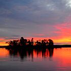 Sunrise Island, Hamlin Lake by Debbie  Maglothin
