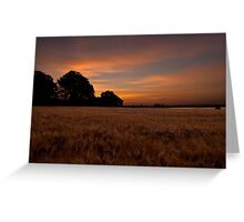 Sunrise in the Country Greeting Card