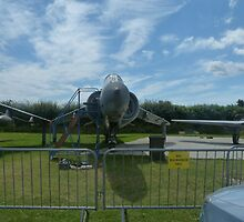 Sea Harrier by normhill