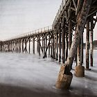 The Pier by GeorgeBuxbaum