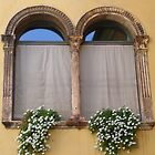 Windows in Verona by lezvee