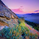 Naramata Sunset I by Matthew Tauzer