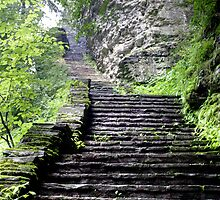 The Steps Never End in Watkins Glen by Gene Walls