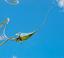 pin-sky cushion by MarianBendeth