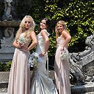 Bridesmaids 2 by Gary Power