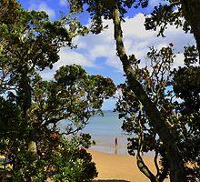 Pohutukawa Hideaway by darlingc