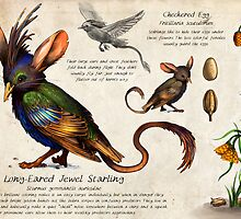 The Jewel Starling by Katie Feldman