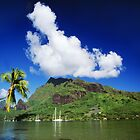 Scenic View in Moorea, French Polynesia by printscapes