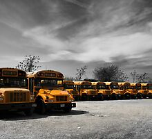 Yellow school buses on a parking lot  by Reinvention