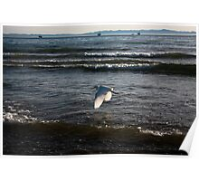 Flying Over Pacifics Poster