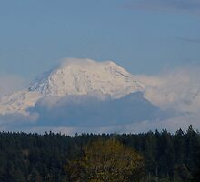 Snow capped Mt. Rainier by Kathleen Hamilton