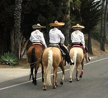 Los Tres Amigos (c) 2013 Ellen Hecht by waddleudo