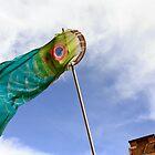 Sky Fish by salodelyma