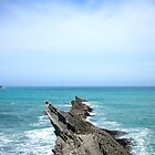 Rocks at Cape Palliser, New Zealand by jezkemp