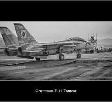 Palm Springs Air Museum - Grumman F-14 Tomcat by Phill Jones