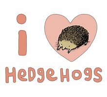 I ? Hedgehogs by Sophie Corrigan