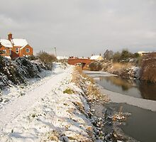 Bridgwater and Taunton Canal - winter scene. by Antony R James