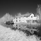 Bridgwater and Taunton Canal #7 by Antony R James
