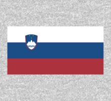 Slovenia Flag by cadellin